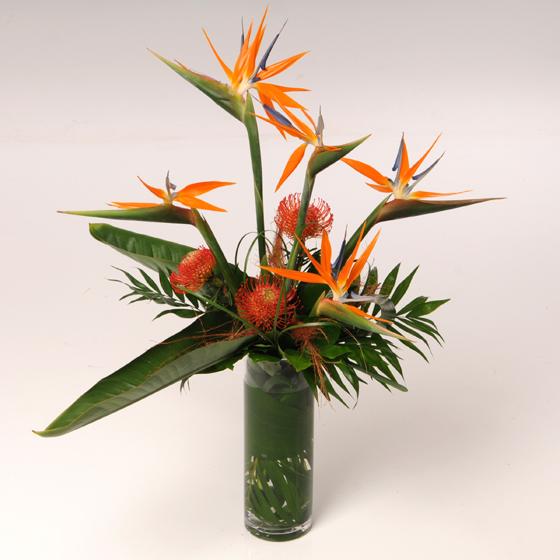 Strelitzia Design Perfect Moment Florist St Albans